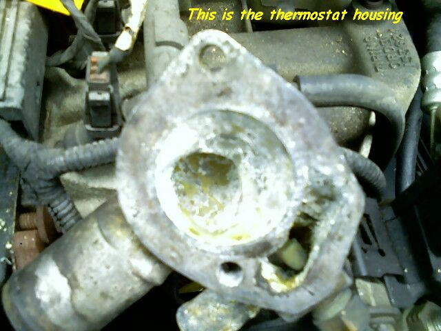 This is the thermostat housing